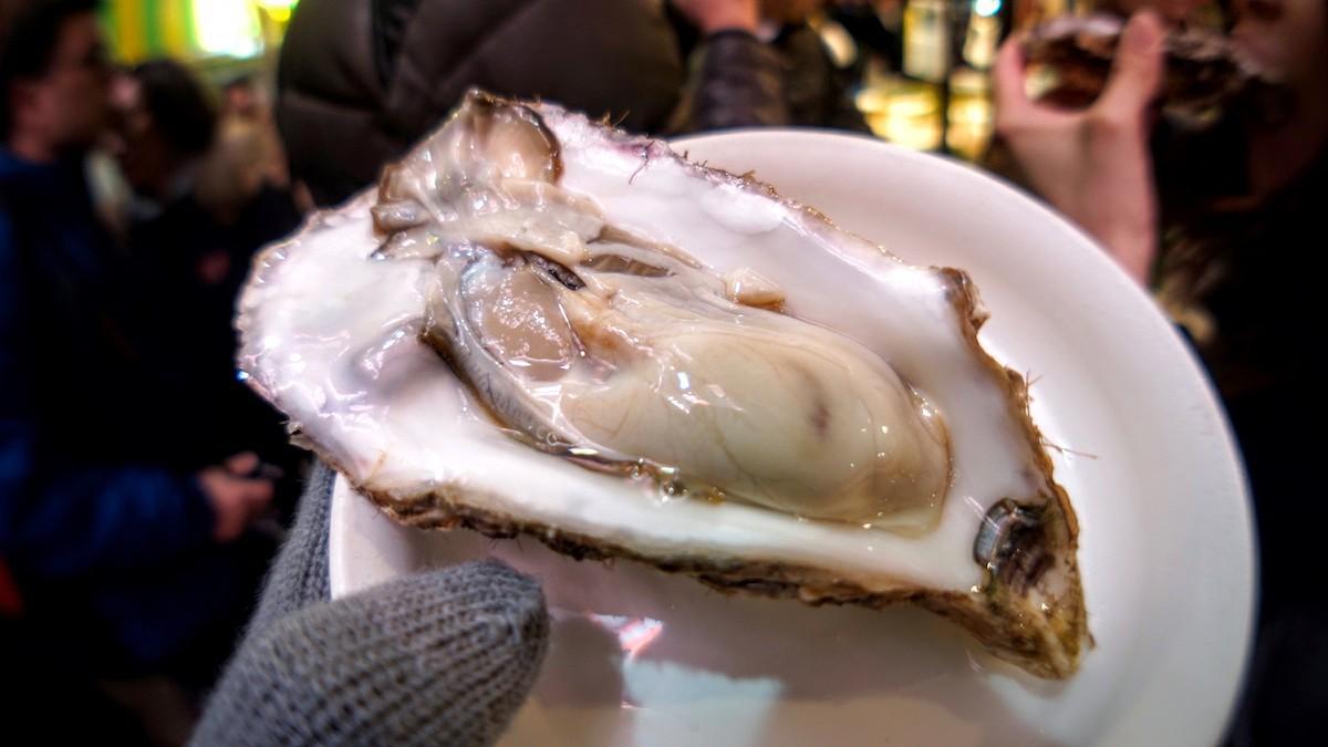 kanazawa-oyster